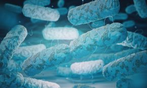 Legionella i dricksvatten